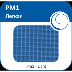 PM1 - Легкая